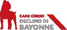 Declino Di Bayonne