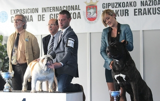 XXXVII-International-Dog-Irun-declino-bayonne